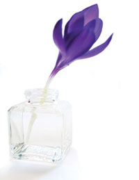 simply-holistic-therapies-crocus